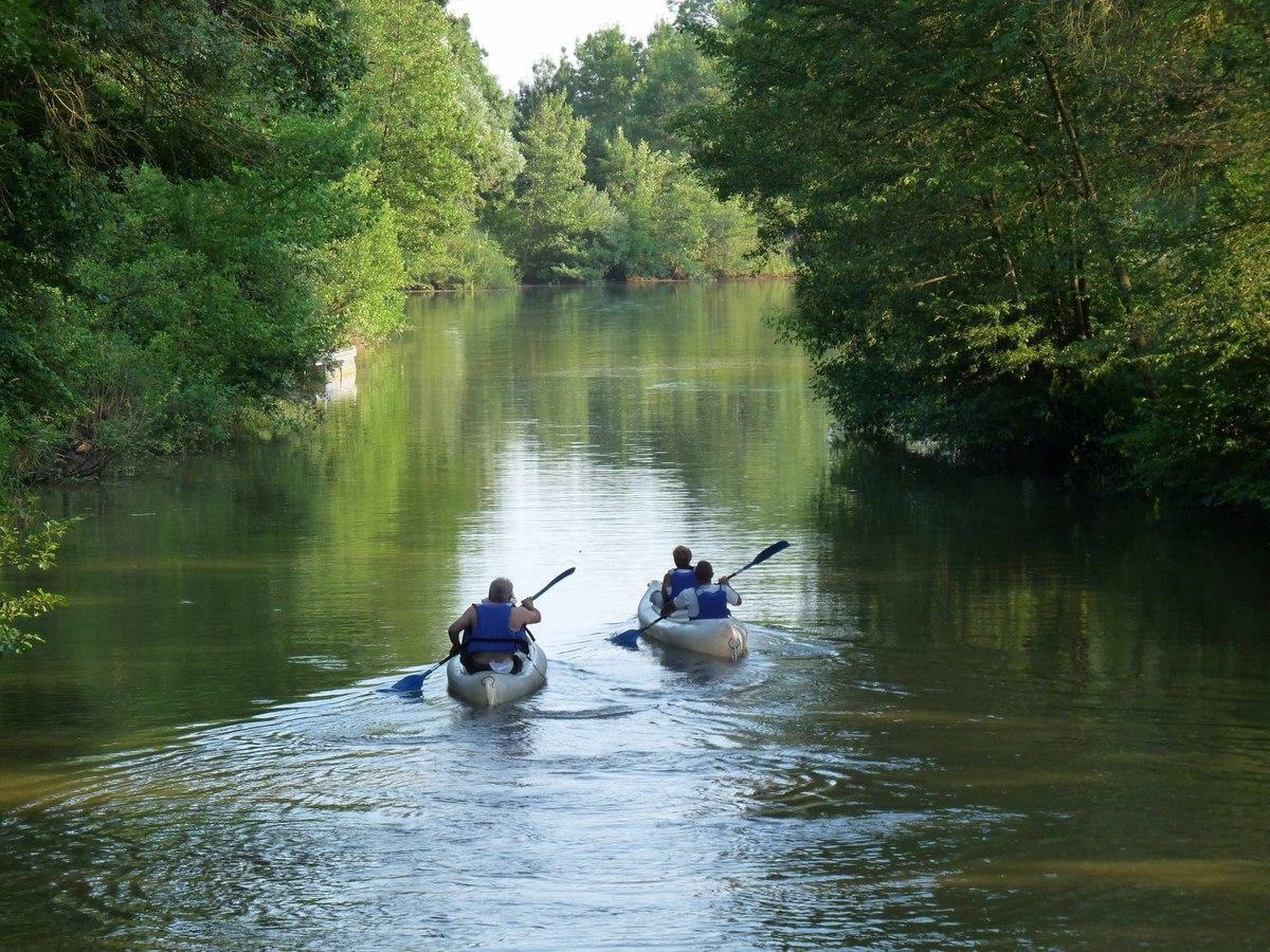 Canoës sur la Saône